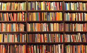 Prêmio Rio de Literatura - Cesgranrio - livros na estante